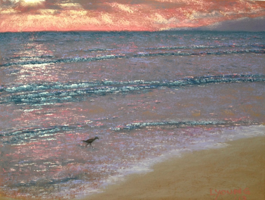 "Sandpiper at Sunset - Banderas Bay soft pastels on sanded pastel paper 9"" x 12"" Lorraine Young Private Collection"