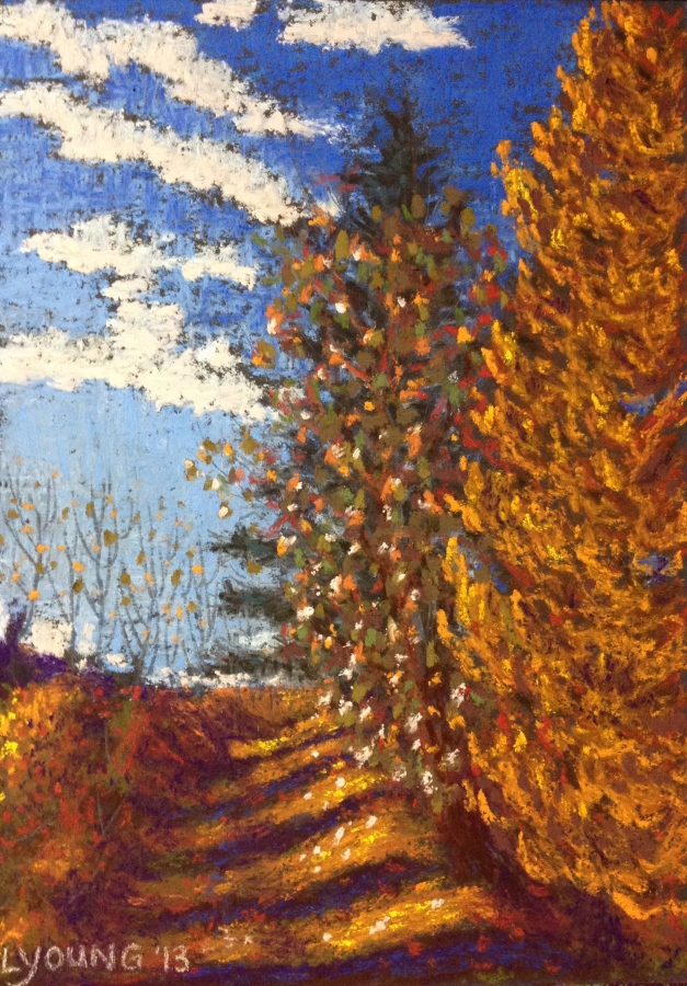 "Autumn Shadows in Jackie Parker Park by Lorraine Young soft pastels on sanded pastel paper 5 ½"" x 7 ½ "" $140 framed"