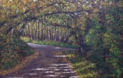 """Mill Creek Ravine"" by Lorraine Young soft pastels on sanded pastel paper 61/2"" x 10"" $165 framed"