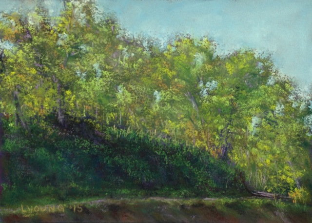 """Bagshot Row, Mill Creek Ravine""  soft pastels on sanded pastel paper, 5"" x 7""  Lorraine Young  $50 unframed"
